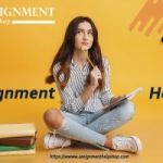 Why not take assignment help online from excellent experts and fly high?