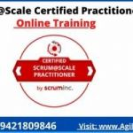 Scrum at Scale Certification