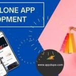 Get your hands on the best ecommerce app - eBay Clone software