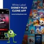 Build A Disney Plus Like App Anyone Would Be Proud Of