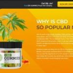 Everything You Need To Know About Top Rated CBD Gummies.
